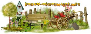 Forum-ogrodnicze.net